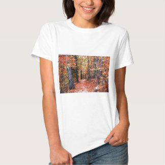 Presentes pintados da aguarela da fuga do outono t-shirts