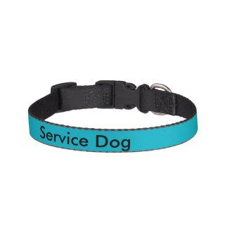 Preste serviços de manutenção à coleira de cão