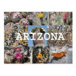 Primavera no cartão da arizona cartão postal