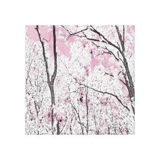 Primavera no rosa