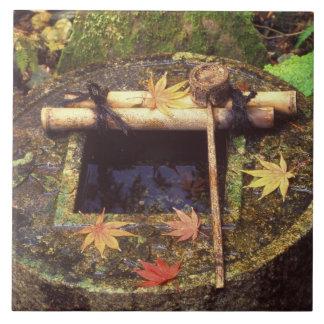 Primavera para a cerimónia de chá templo de Ryanj Azulejo