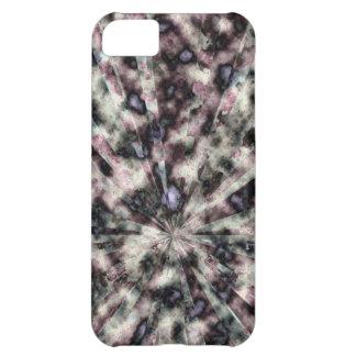 Primavera separado capa para iPhone 5C