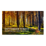 Pro fotografia (floresta)