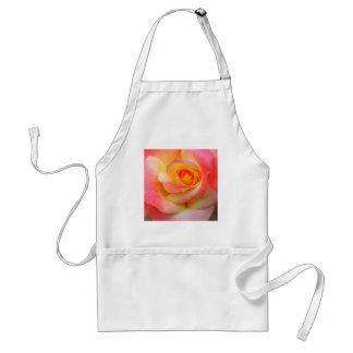 Produtos alaranjados, amarelos, e do rosa do rosa  avental