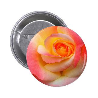 Produtos alaranjados, amarelos, e do rosa do rosa  boton