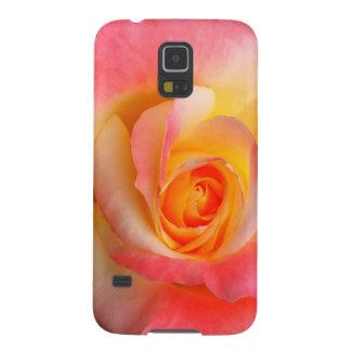 Produtos alaranjados, amarelos, e do rosa do rosa capa galaxy s5