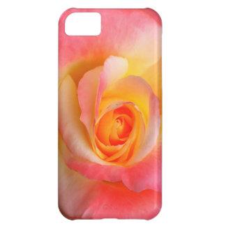 Produtos alaranjados, amarelos, e do rosa do rosa  capas para iphone 5C