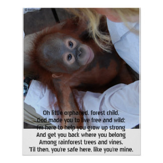 Promessa aos órfão dos animais selvagens poster