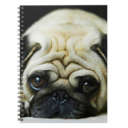 Pug bonito cadernos espirais