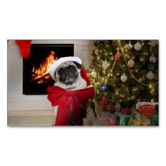 Pug Misha que espera na manhã de Natal
