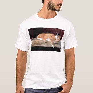 Punkin drapeja camiseta