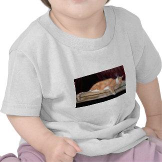 Punkin drapeja t-shirt