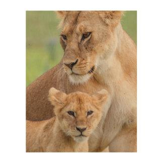 Quadro De Madeira Leoa e leão Cub