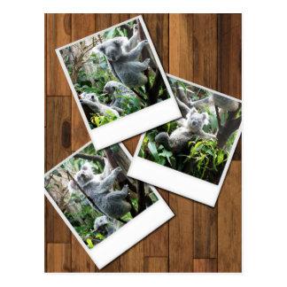 Quadro imediato da foto de Personalizable multi Cartões Postais