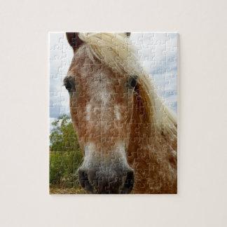 Quebra-cabeça Adoce o cavalo do Appaloosa, _
