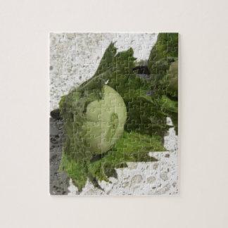 Quebra-cabeça Avelã verdes frescas no assoalho