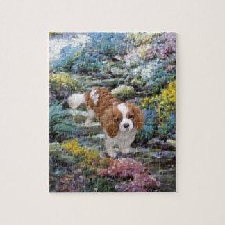 Quebra-cabeça Cavalier no jardim de rocha