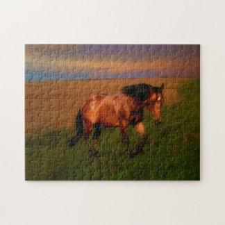 Quebra-cabeça Cavalo do verão