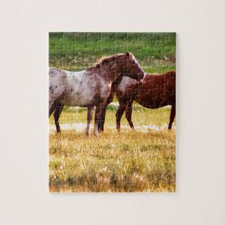 Quebra-cabeça Cavalos no pasto