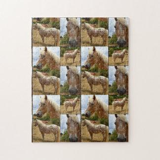 Quebra-cabeça Colagem da foto dos cavalos do Appaloosa,