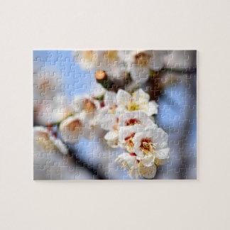 Quebra-cabeça Flores de cerejeira