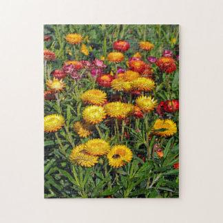 Quebra-cabeça Flores vermelhas e amarelas do botão
