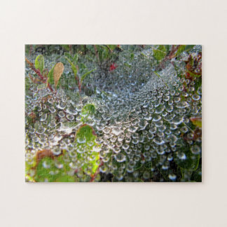 Quebra-cabeça Onda do orvalho em uma Web de aranha