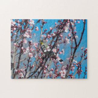 Quebra-cabeça - pardal da primavera quebra-cabeças