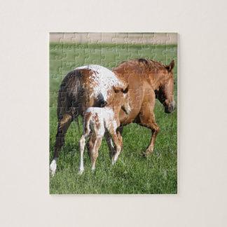 Quebra-cabeça Potro e égua do cavalo do Appaloosa