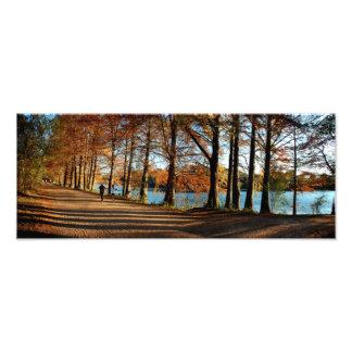 Queda 3 da fuga de Lake Butler da joaninha em Impressão De Foto