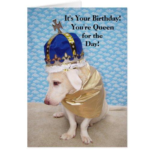 Rainha do aniversário cartões