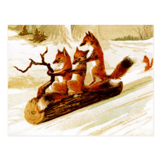 Raposas que Sledding através da neve em um Cartão Postal