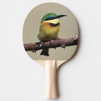 Raquete De Ping Pong Abelha-comedor pequeno