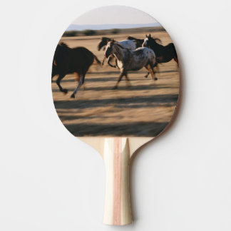Raquete De Ping-pong Cavalos Running