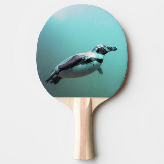 RAQUETE DE PING-PONG PINGUIM