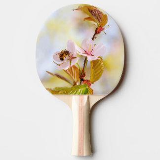 Raquete De Tênis De Mesa Abelha em uma flor da cereja