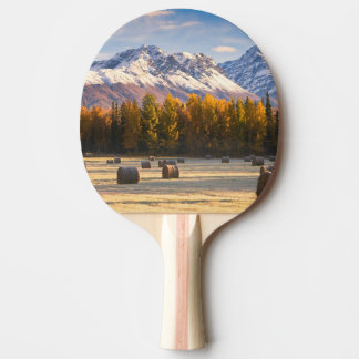 Raquete De Tênis De Mesa Cultivo de Alaska