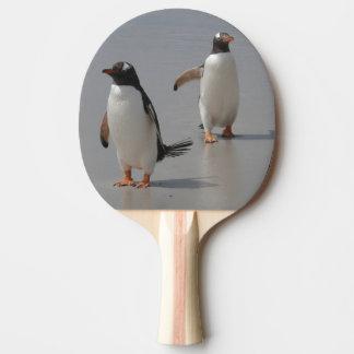 Raquete Para Ping-pong peguin