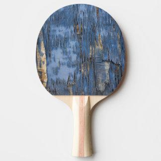 Raquete Para Tênis De Mesa Textura azul da pintura da casca