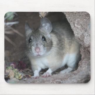 Rato de madeira Mousepad