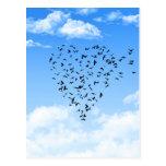Rebanho do coração do amor dos pássaros cartões postais