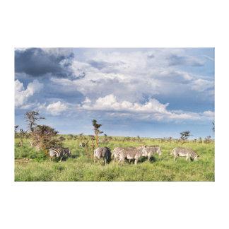 Rebanho misturado da zebra de Grevy (Equus Grevyi) Impressão De Canvas Esticadas
