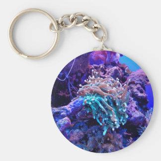 Recife de corais chaveiro