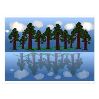reflexão da árvore cartão postal