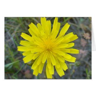 Rei amarelo diabo do Wildflower F0016 Cartão
