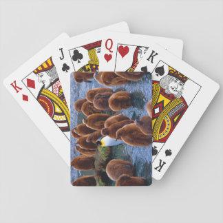 Rei pinguim com pintinhos - cartões de jogo cartas de baralho