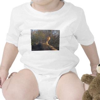 Rei Selva T-shirt