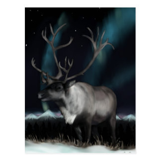 Reinedeer do cartão da aurora boreal