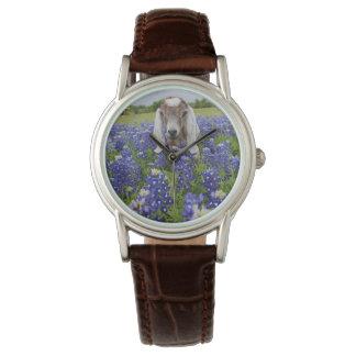 Relógio de senhoras do Bluebonnet da cabra do bebê