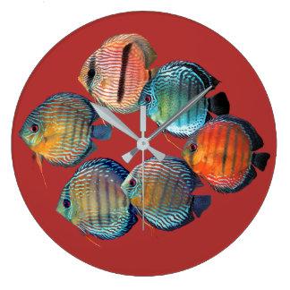 Relógio Grande Wild Discusfish